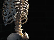 For patients with active ankylosing spondylitis