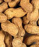 A huge recall of products that contain cumin spice possibly contaminated with peanut has been ongoing in the United States since December