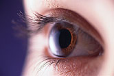 Community optometrists have moderate inter-observer agreement for grading limbal anterior chamber depth