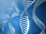 Skeletal muscle phosphatase and tensin homolog deleted on chromosome 10 regulates insulin resistance in a sex-specific manner