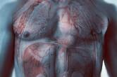 Screening men presenting with erectile dysfunction for cardiovascular disease risk factors can potentially cut future cardiovascular events and save billions of dollars over 20 years
