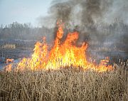 Wildfires create air pollution that fuels the risk for cardiovascular events