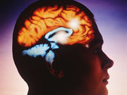 Methylene blue may increase activity in brain regions involved in short-term memory and attention