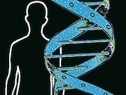 Males with BRCA mutations have increased incidence of malignant disease