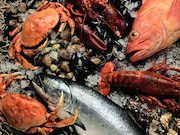There have been 12 reported cases of people in the United States becoming sick after eating fresh crab meat from Venezuela