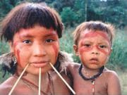 The Amerindian Yanomami community