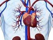 Arterial stiffness may predict dementia risk