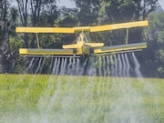 Prenatal exposure to ambient pesticides within 2
