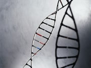 Only one-quarter of those with breast cancer and one-third with ovarian cancer undergo genetic testing