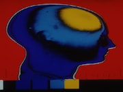 Individuals with a history of traumatic brain injury have regional brain atrophy
