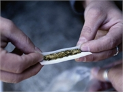 Individuals with chronic pain who use daily cannabis have lower odds of using illicit opioids