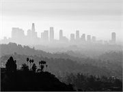 Exposure to air pollution may have adverse effects on cognitive aging and brain health in older adults