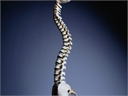 In patients who have previously suffered a vertebral fracture