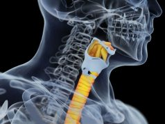 Charges of aggravated assault have been filed against a surgeon once hailed for creating the world's first windpipe partially made from a patient's own stem cells